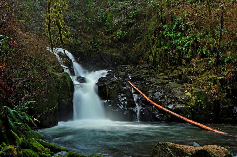 Sweet Creek, Oregon # 163-018