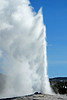 Old Faithful  # 176-229