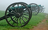 Cannon Row, Antietam National Battlefield