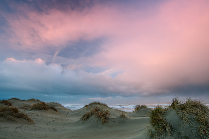 Siuslaw National Forest, South Jetty, Florence, Oregon # 3-ed1