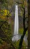 Elowah Falls  # 168-125