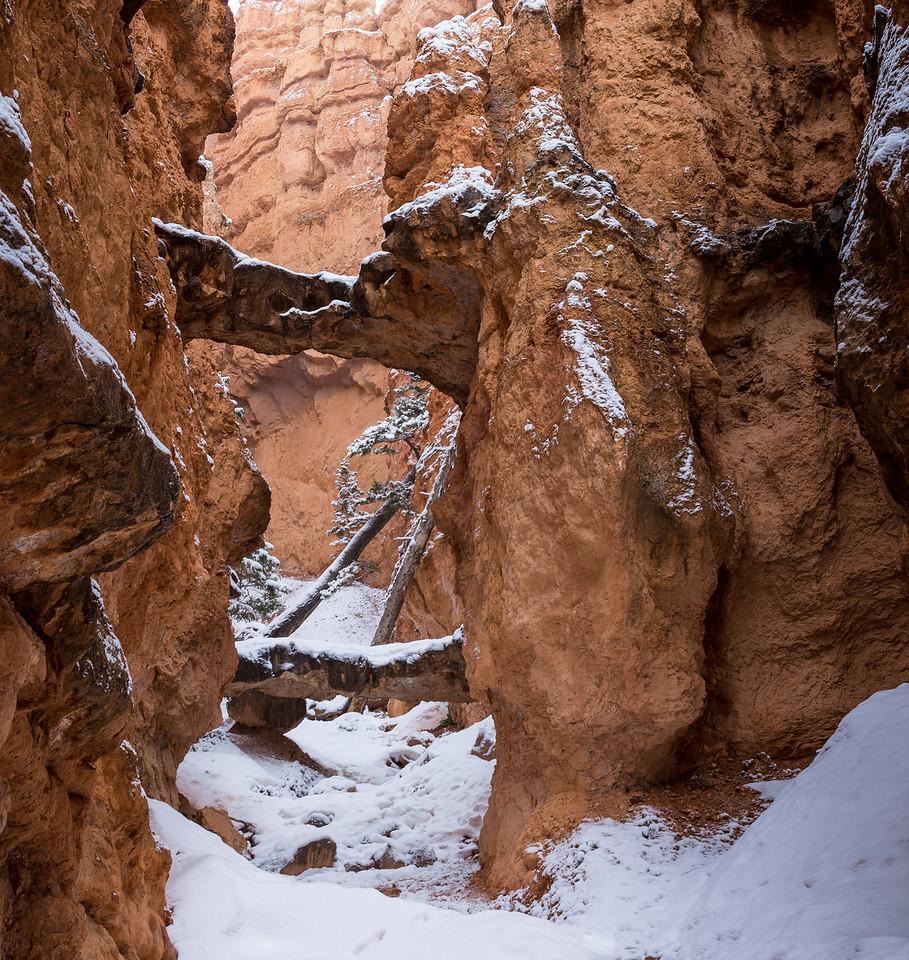 Two Bridges, Bryce Canyon