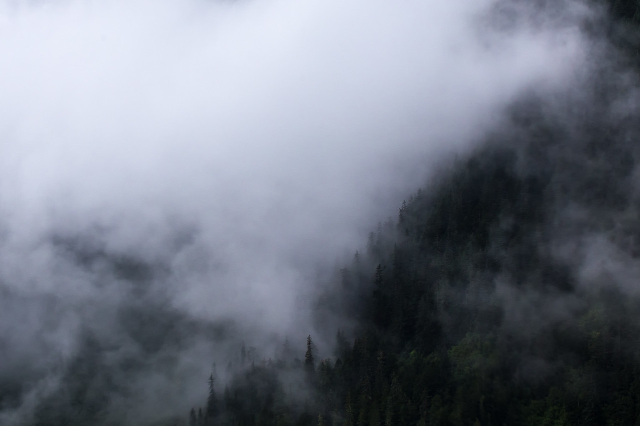 Creeping Clouds in the Tongass National Forest near Juneau.