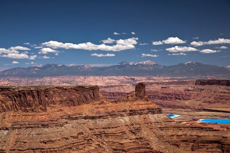 La Sal Mountains and Canyon Rim