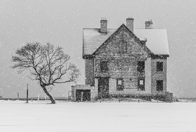 A Snowy Scene At Officer's Row In Fort Hancock, Sandy Hook 2/7/21