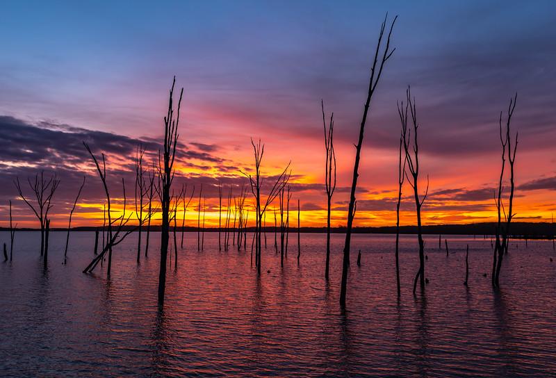 A Fiery Sunrise Over The Manasquan Reservoir 1/11/20
