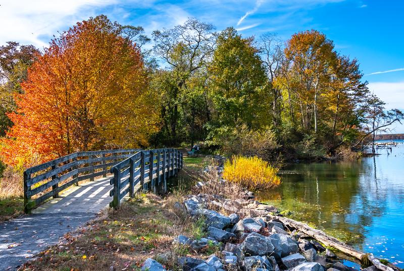 Autumn Scene at Manasquan Reservoir 11/1/18