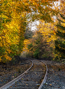 Autumn Colors Over Railroad Tracks 11/1/18