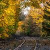 Autumn Colors Over Railroad Tracks 11/1/18
