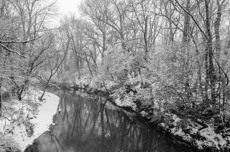 Snowy Creek 3/21/18