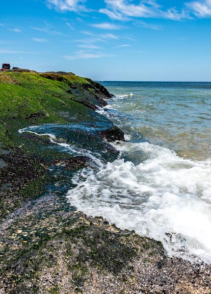 Algae Covered Jetty in Ocean Grove 7/8/17