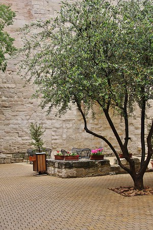 A Quiet Place in Avignon