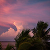 Palm Cloud Sunset