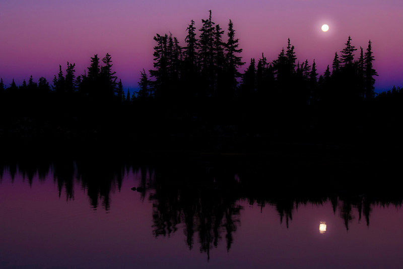 ~ Mystical Moon Light ~