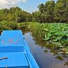 Tra Su Nature Reserve