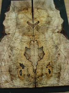 BLDesign.us:  Spalted Myrtle Burl 1-003  sold  Used on #014 Photos: Beau Leopard. Slideshow Music: Nick Rosenthal and Beau Leopard.  All Content © 2005-2007  Beau Leopard Design .:. Custom Bass Guitars