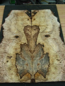 BLDesign.us: Spalted Myrtle Burl 1-002  sold  Used for the back of #012  Photos: Beau Leopard. Slideshow Music: Nick Rosenthal and Beau Leopard.  All Content © 2005-2007  Beau Leopard Design .:. Custom Bass Guitars