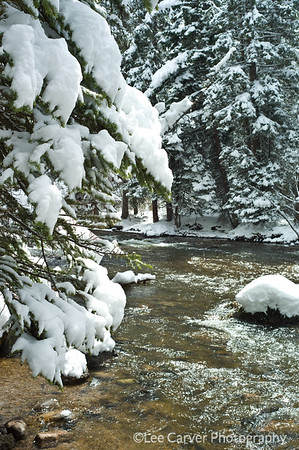 Snow storm on Gore Creek.