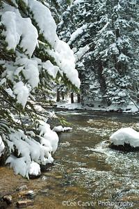 Snow storm on Gore Creek.