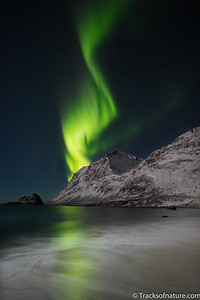 Aurora over beach, Lofoten