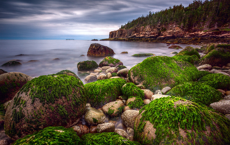 Monument Cove, Acadia National Park, Maine (June 2013)
