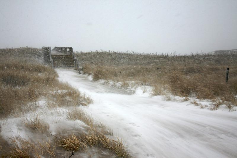 Winter Blizzard at Crane Beach, Ipswich