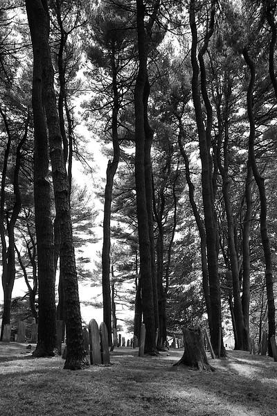 Cemetery Manchester Massachusetts