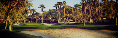 10th Green, Indian Wells