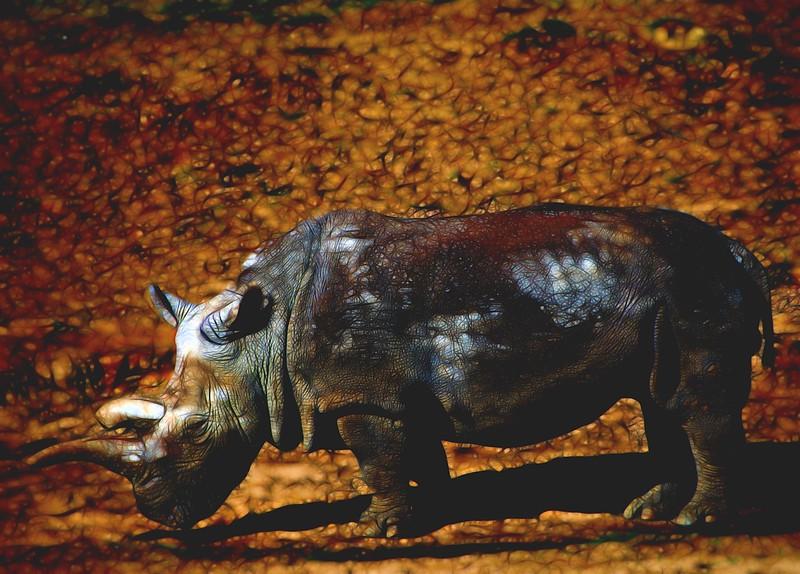 White Rhino  Topaz Mysterious I.jpg
