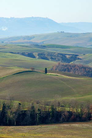 Val d'Orcia (Montalcino in the background)