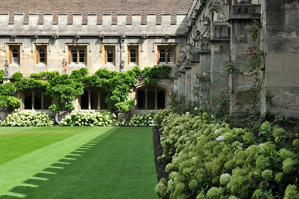 Cloister lawn
