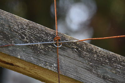 Gammalt staket