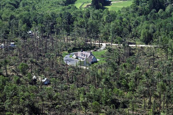 Aerial photo taken 6/7/2011, Monson, MA tornado  - Looking west, tree fall pattern.