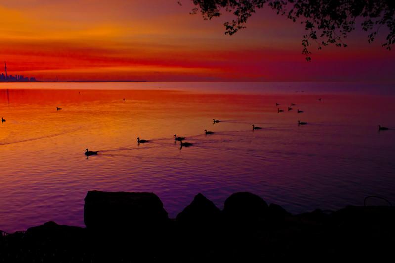 Golden rising sun over Lake Ontario