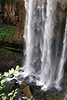 Tew's Falls #3