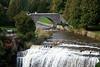 Webster Falls and Bridge