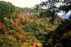 Escarpment View #3
