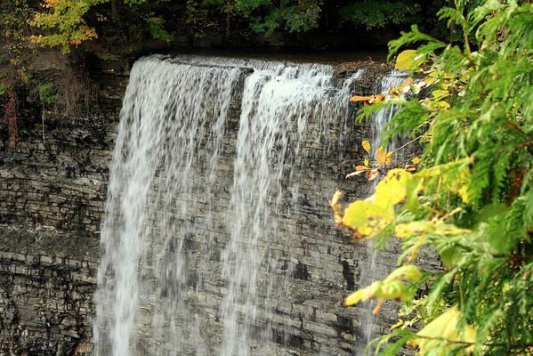Tew's Falls #4.JPG