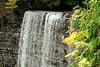 Tew's Falls #4
