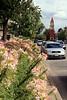 Queen Street View