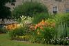 Fergus - Templin Gardens #5