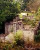 Templin Gardens #1