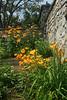 Fergus - Templin Gardens #4