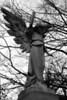 Ressurection Angel