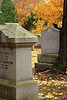 Graves with Squirrel and Leaves