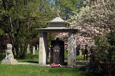 Springtime in Mount Pleasant Cemetery