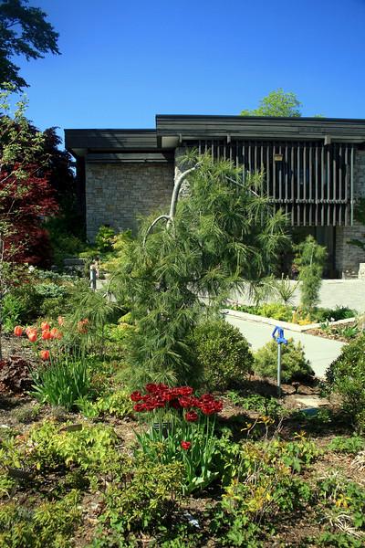 Toronto Botanical Gardens #1