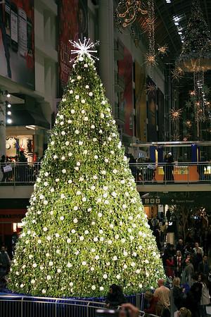 Downtown Toronto at Christmastime