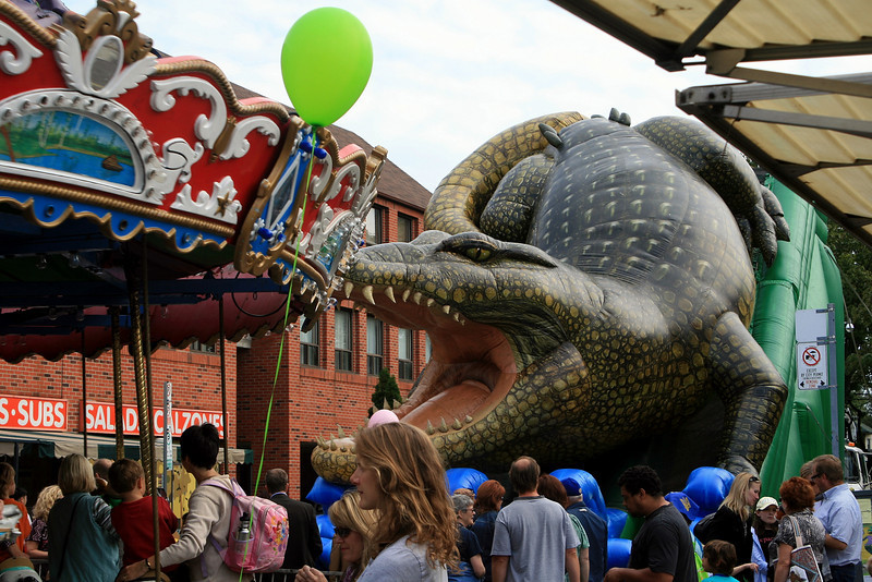 Alligator with a Taste for Carousels