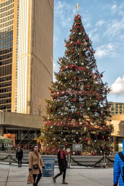 Toronto City Christmas Tree